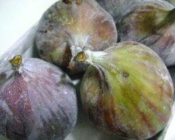 Benefícios do figo já eram conhecidos desde tempos bíblicos.