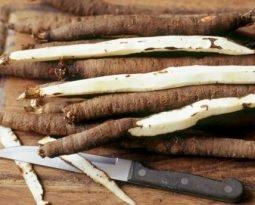 Salsify, raíz saborosa que regula açúcares no sangue