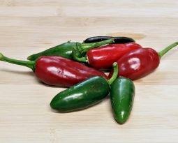 Pimenta Jalapeno, picância que faz bem pra saúde